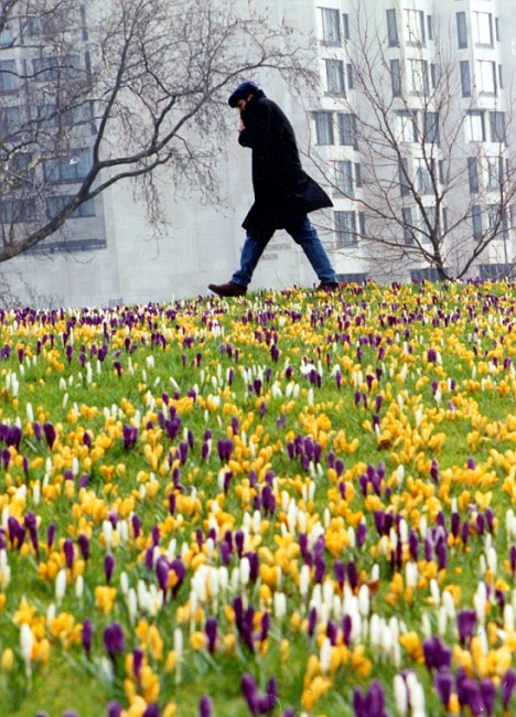 spring-walk-london